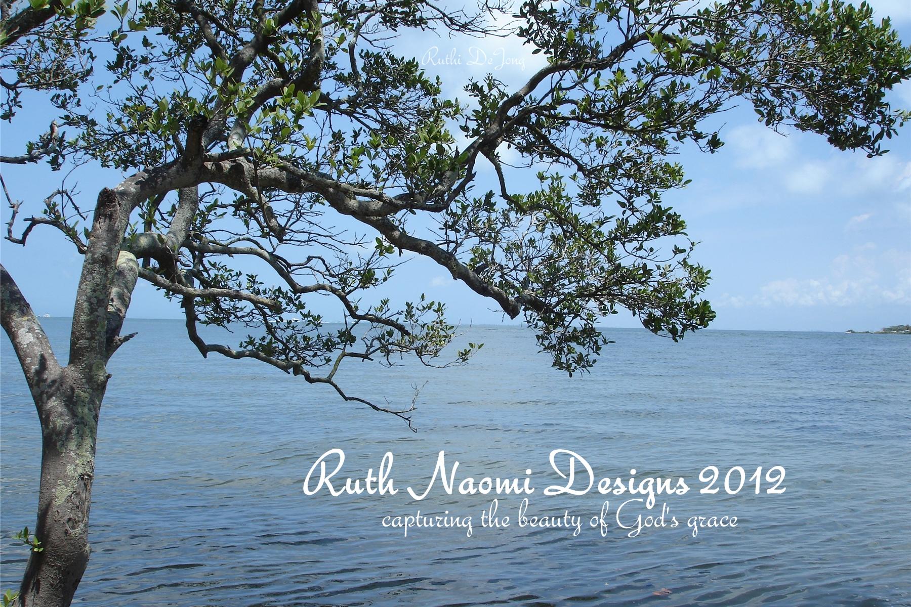 ruth naomi designs ruthi u0027s reflections